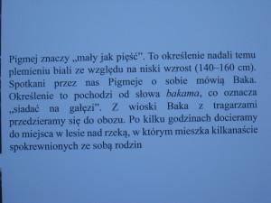 IMG_3883